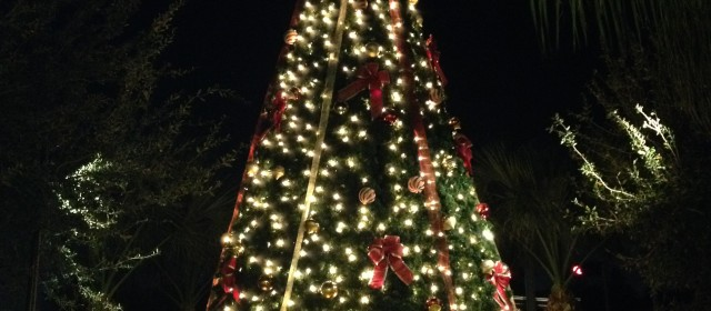 LIGHTING OF THE TREE